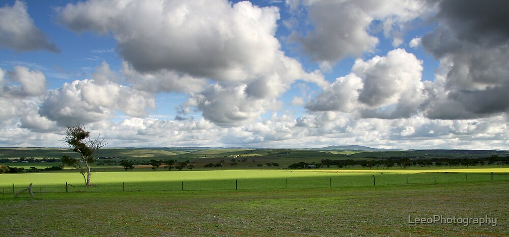 Country Clouds - Callington by LeeoPhotography