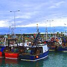 Pittenweem Fishing Boats by Tom Gomez