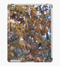 Autumn Afternoon iPad Case/Skin