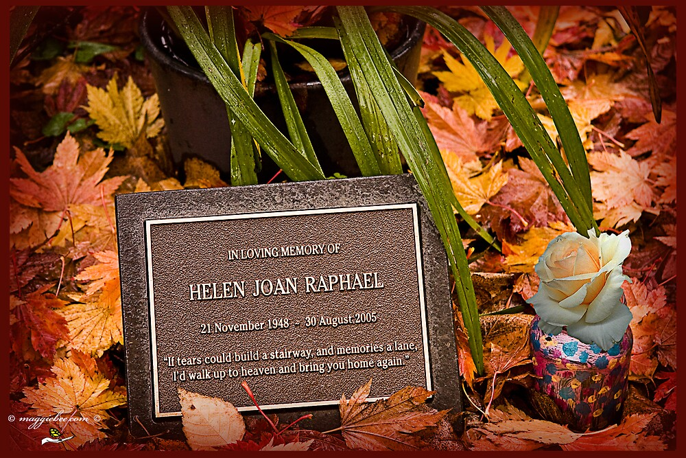 A lovely headstone bathed in nostagia and autumn sunlight playing on fallen leaves by Maggiebee