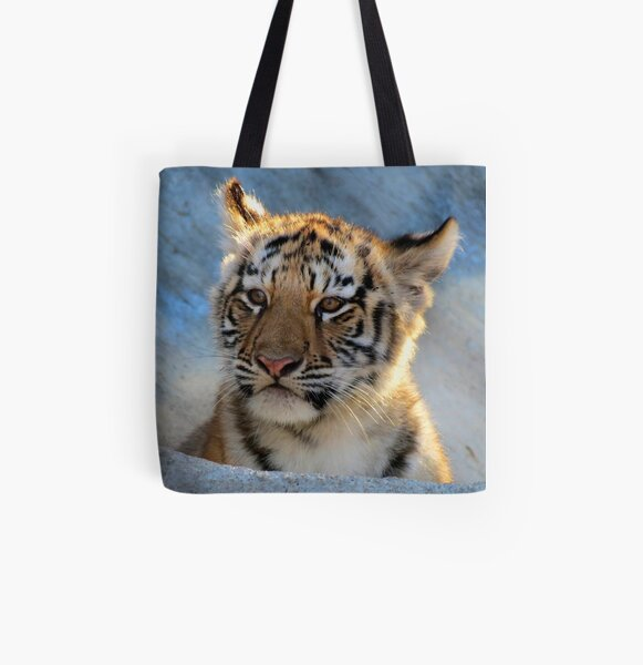 Baby Tiger Portrait All Over Print Tote Bag