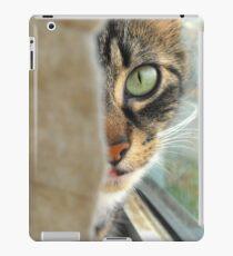 Mystery Cat iPad Case/Skin