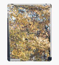 Yellow Fall Trees iPad Case/Skin
