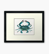 """""""Blue Crab"""" by Amber Marine, watercolor painting, © 2013 Framed Print"""