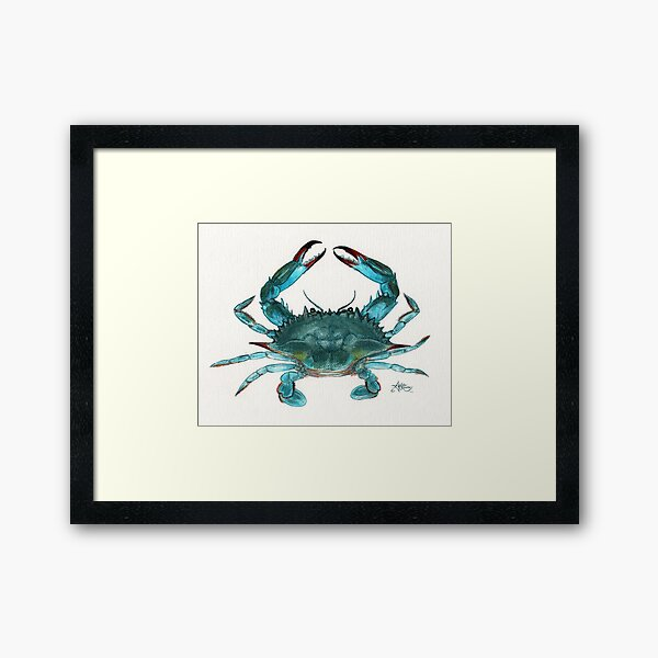 """Blue Crab"" by Amber Marine, watercolor painting, © 2013 Framed Art Print"