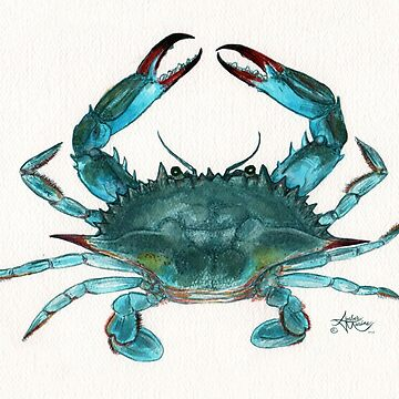 """Blue Crab"" by Amber Marine, watercolor painting, © 2013 by AmberMarine"