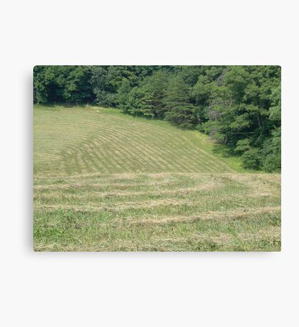 Field of Lines Canvas Print