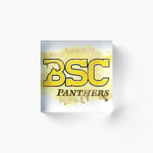 Birmingham-Southern College Rustic Watercolor Logo Acrylic Block