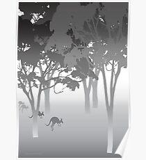Morning Fog - kangaroos - Australian bush scene Poster