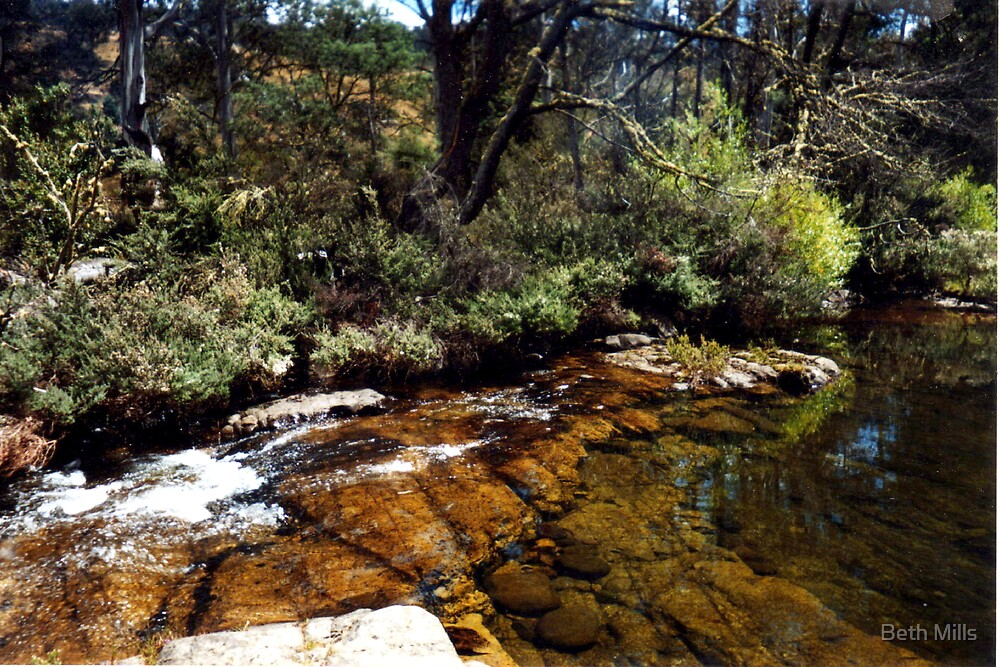 River in Central Highlands, Tasmania. by Beth Mills