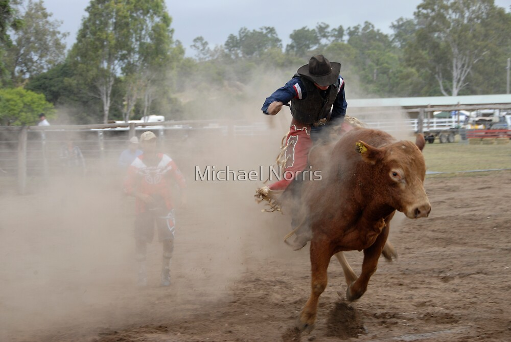 Bucking Bull and Bull-Dust by Michael Norris