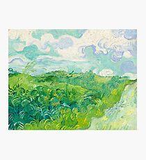 Green Wheat Fields Auvers Van Gogh Fine Art Photographic Print