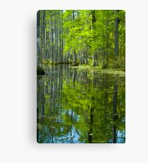 The Reflecting Pool © Canvas Print
