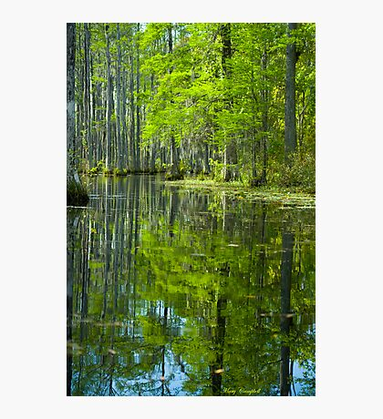The Reflecting Pool © Photographic Print