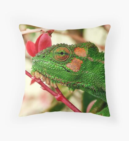 Rosey Cheeks Throw Pillow