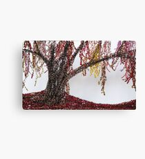 Willow in Red Canvas Print