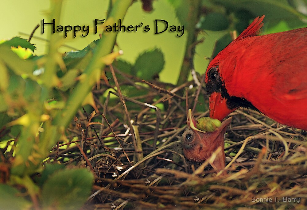 Happy Father's Day Cardinals by Bonnie T.  Barry