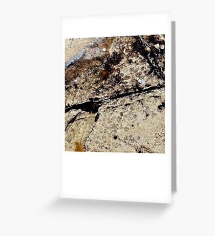 untitled #90 [kilcunda] Greeting Card