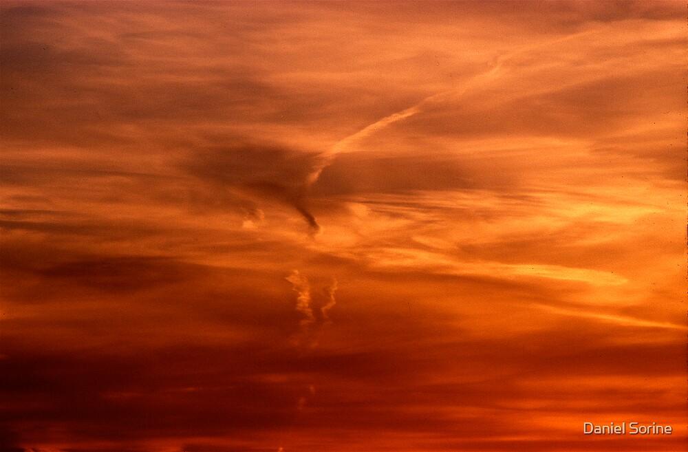 Evening sky over Manhattan by Daniel Sorine