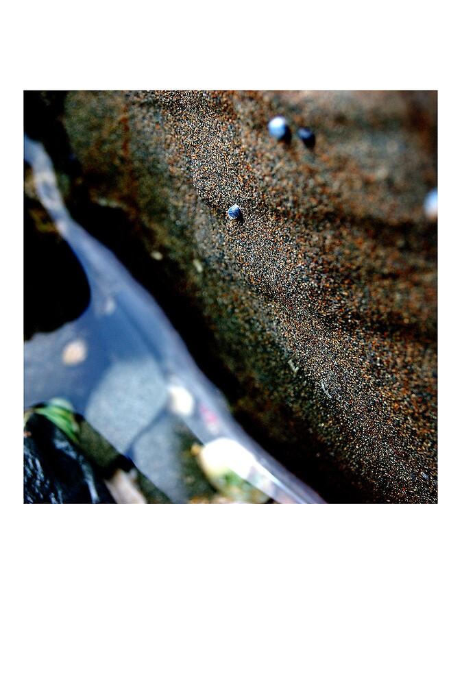 untitled #36 [flat rocks] by Bronwen Hyde