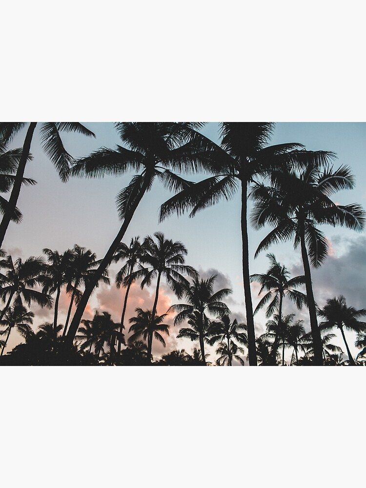 Pacific Palms by TravelDream