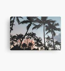 Pacific Palms Metal Print
