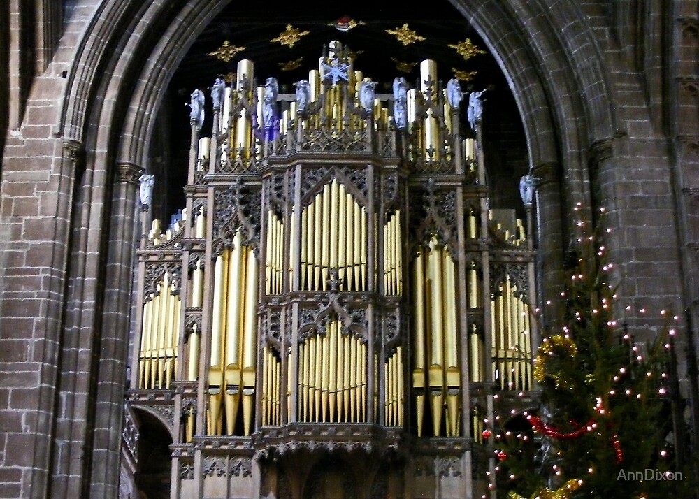 Chester Cathedral Organ at Christmastime by AnnDixon