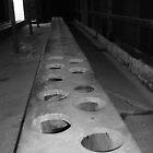 Auschwitz-Birkenau II by Rachael Lynch