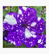 Galaxy Flower Photographic Print