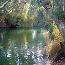 Jordan river southern of Sea of Galilee by Moshe Cohen