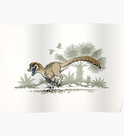 Troodon Poster