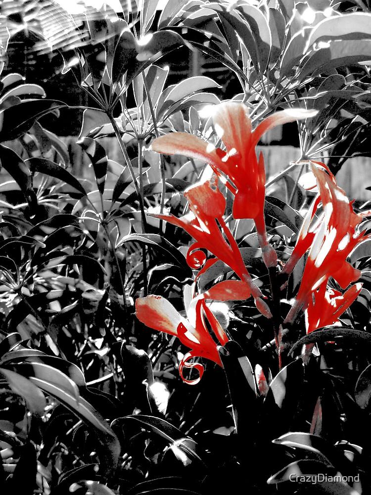 Red Flowers #2 by CrazyDiamond