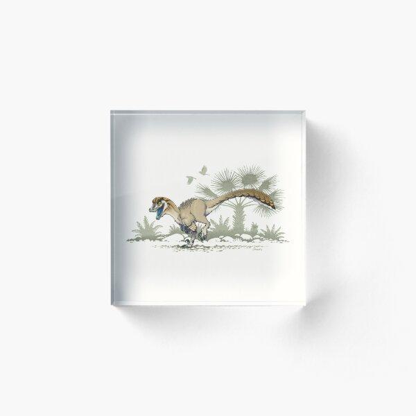 Troodon Acrylic Block