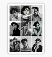 cole sprouse black and white aesthetic collage Sticker