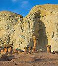 Toadstools, Utah by Tamas Bakos