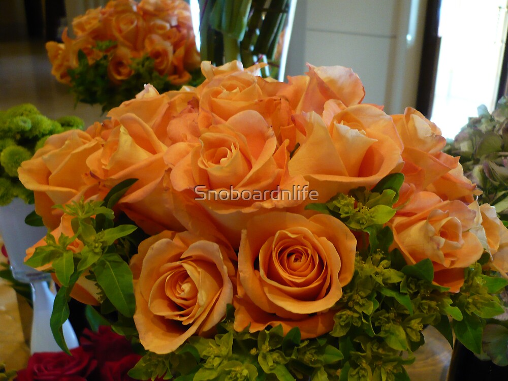 Orange Roses by Snoboardnlife