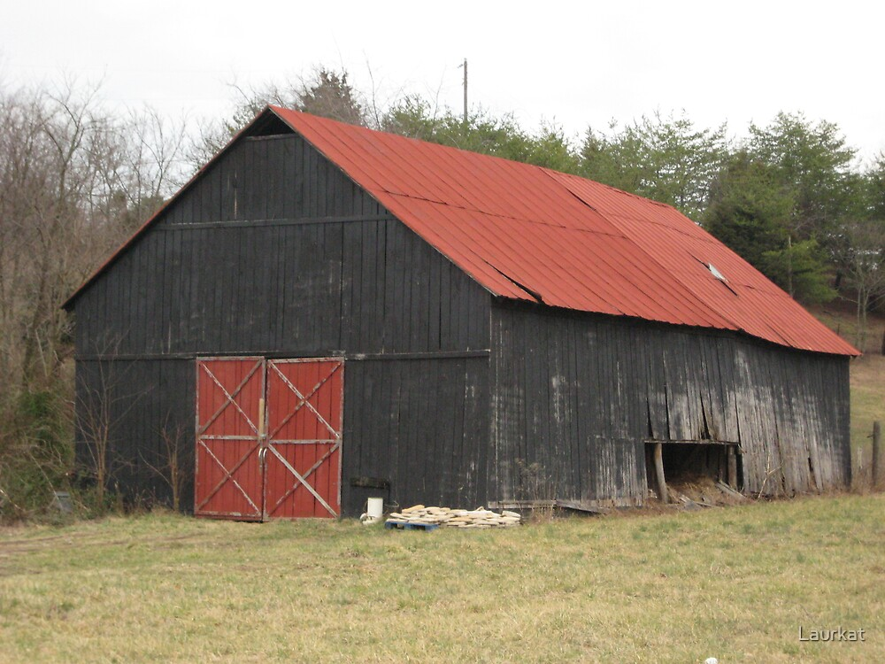 Kentucky roadside barn with red roof by Laurkat