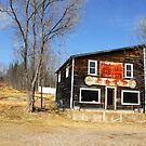 The Old General Store :) by TerriRiver
