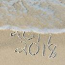 New Year 2018 Beach by Maria Dryfhout