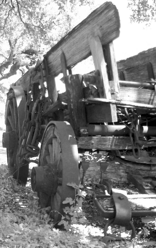 Buffalo Wagon by courier