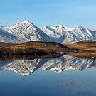 Black Mount Reflections by beavo