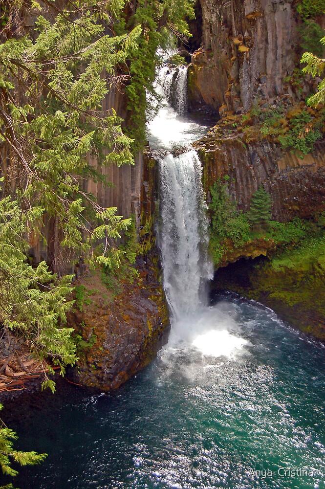 Tokatee Falls on the Umpqua River by Anya  Cristina