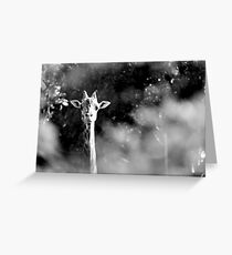 portrait of giraffe Greeting Card