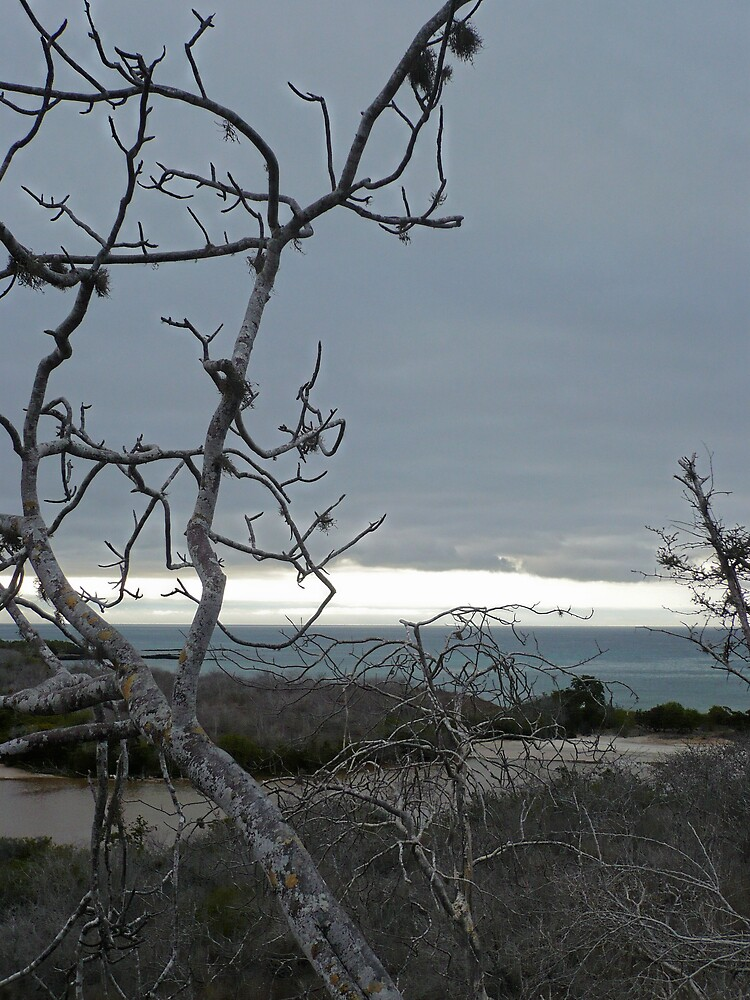 Island Dusk by Nathaniel Taylor