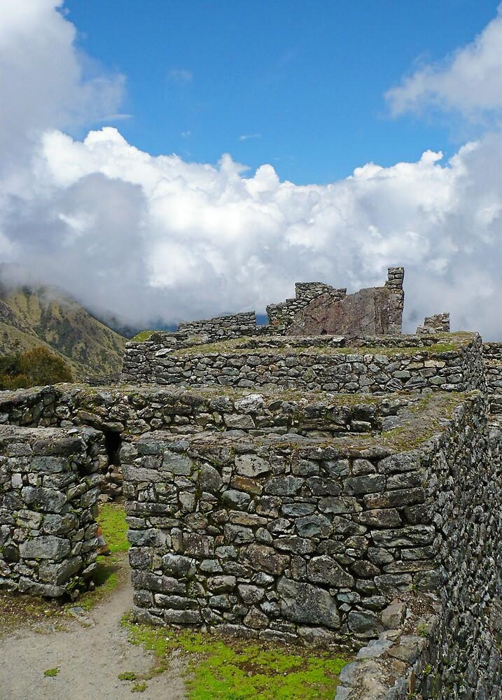 Ruin by Nathaniel Taylor