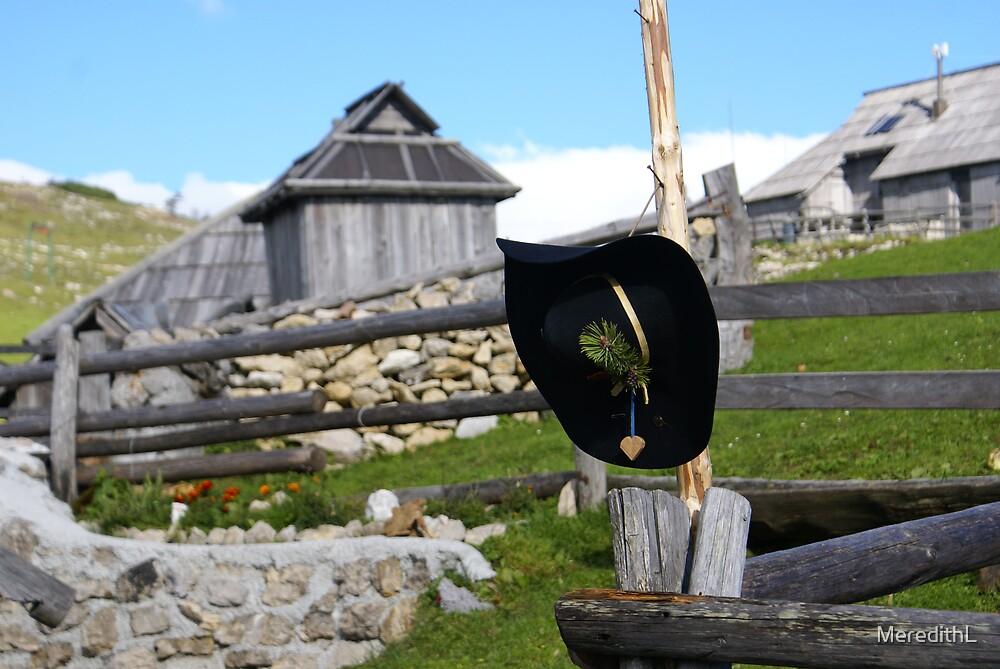 Shephard hat by MeredithL