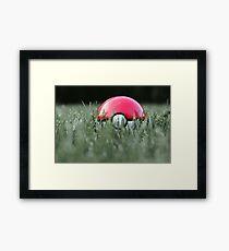 Pokeball in Grass Framed Print