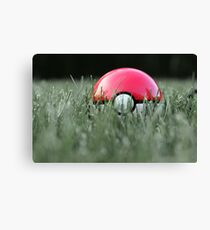 Pokeball in Grass Canvas Print