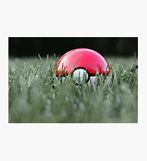 Pokeball in Grass Photographic Print