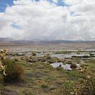 Bolivia, landscape  by EvilGeniusBaby
